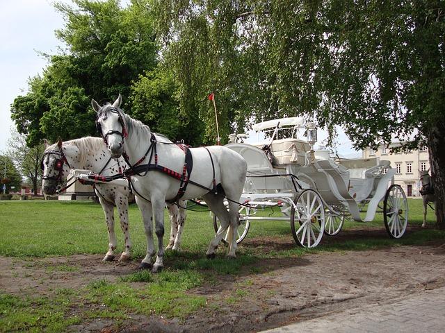 biała bryczka do ślubu